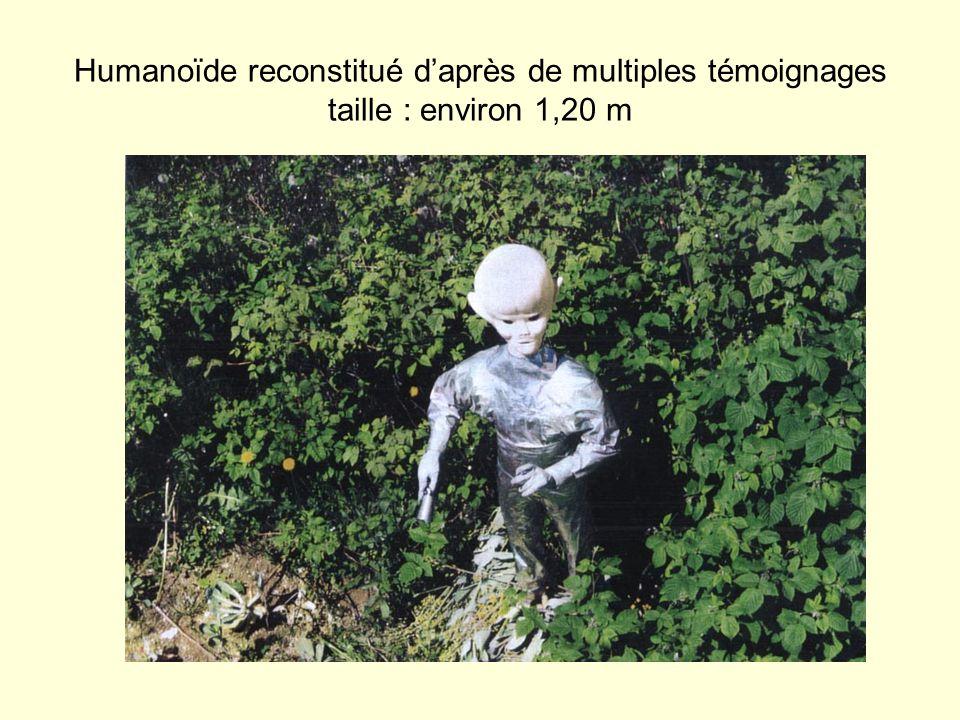 Humanoïde reconstitué daprès de multiples témoignages taille : environ 1,20 m