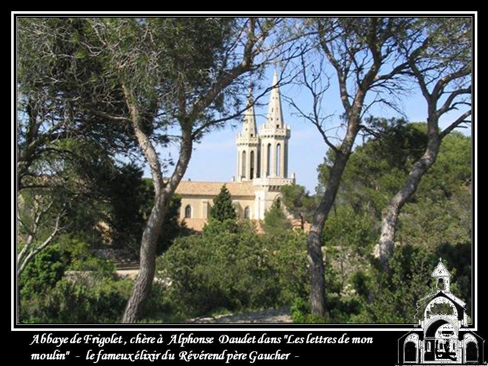 Abbaye de Saint Michel de Frigolet en Provence