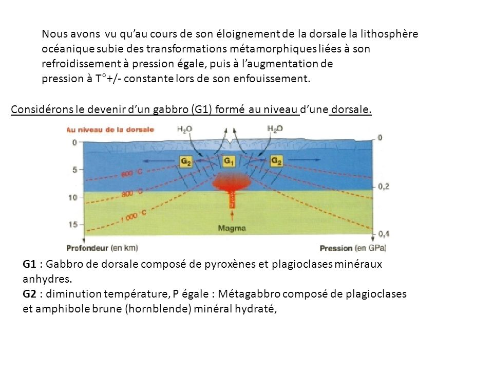 Nous avons vu quau cours de son éloignement de la dorsale la lithosphère océanique subie des transformations métamorphiques liées à son refroidissement à pression égale, puis à laugmentation de pression à T°+/- constante lors de son enfouissement.