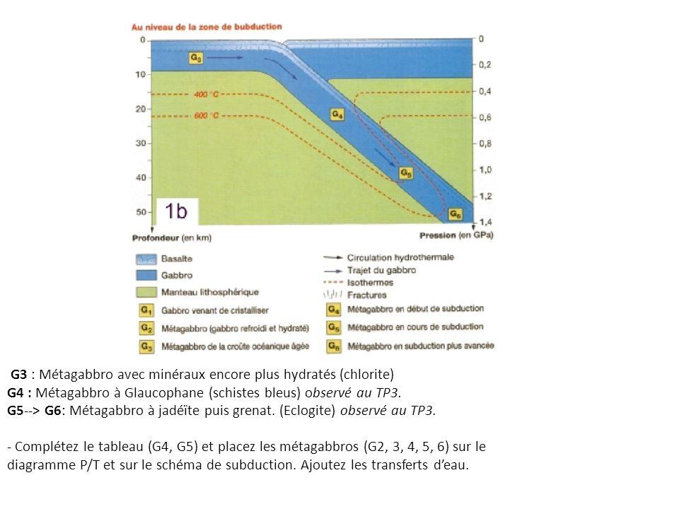 G3 : Métagabbro avec minéraux encore plus hydratés (chlorite) G4 : Métagabbro à Glaucophane (schistes bleus) observé au TP3. G5--> G6: Métagabbro à ja