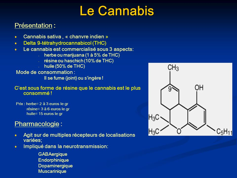 Le Cannabis : Présentation : Cannabis sativa, « chanvre indien » Delta 9-tétrahydrocannabicol (THC) Le cannabis est commercialisé sous 3 aspects: - -