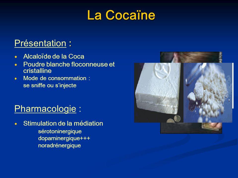 La Cocaïne La Cocaïne : Présentation : Alcaloïde de la Coca Poudre blanche floconneuse et cristalline Mode de consommation : se sniffe ou sinjecte Pha