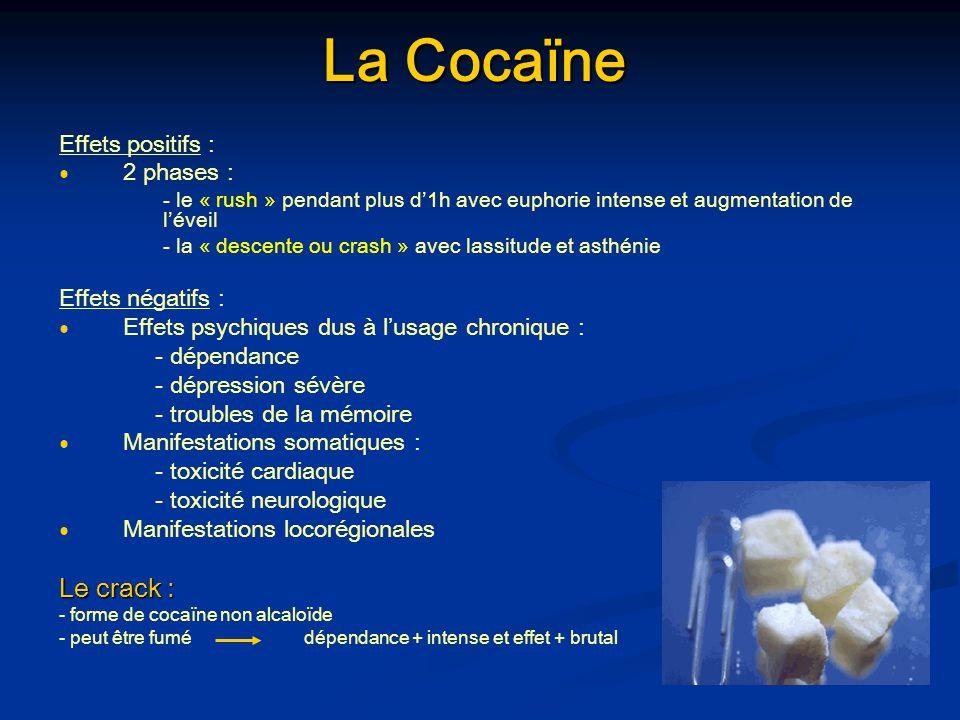 La Cocaïne Effets positifs : 2 phases : - le « rush » pendant plus d1h avec euphorie intense et augmentation de léveil - la « descente ou crash » avec