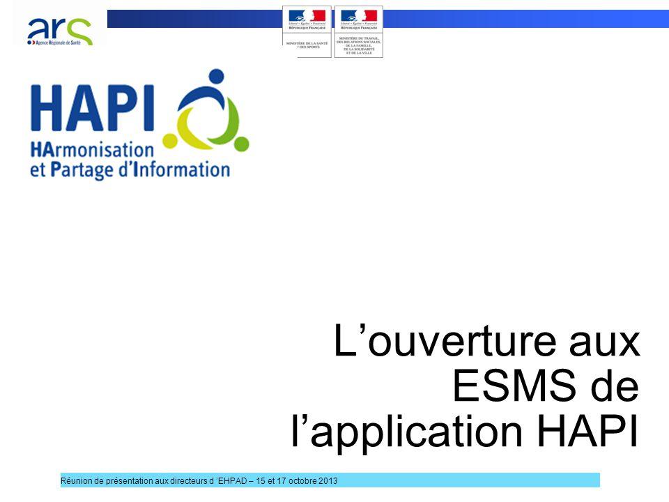 Louverture aux ESMS de lapplication HAPI 10 Réunion de présentation aux directeurs d EHPAD – 15 et 17 octobre 2013