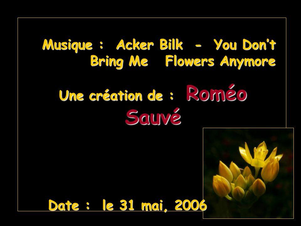 Musique : Acker Bilk - You Dont Bring Me Flowers Anymore Une création de : Roméo Sauvé Date : le 31 mai, 2006 Date : le 31 mai, 2006