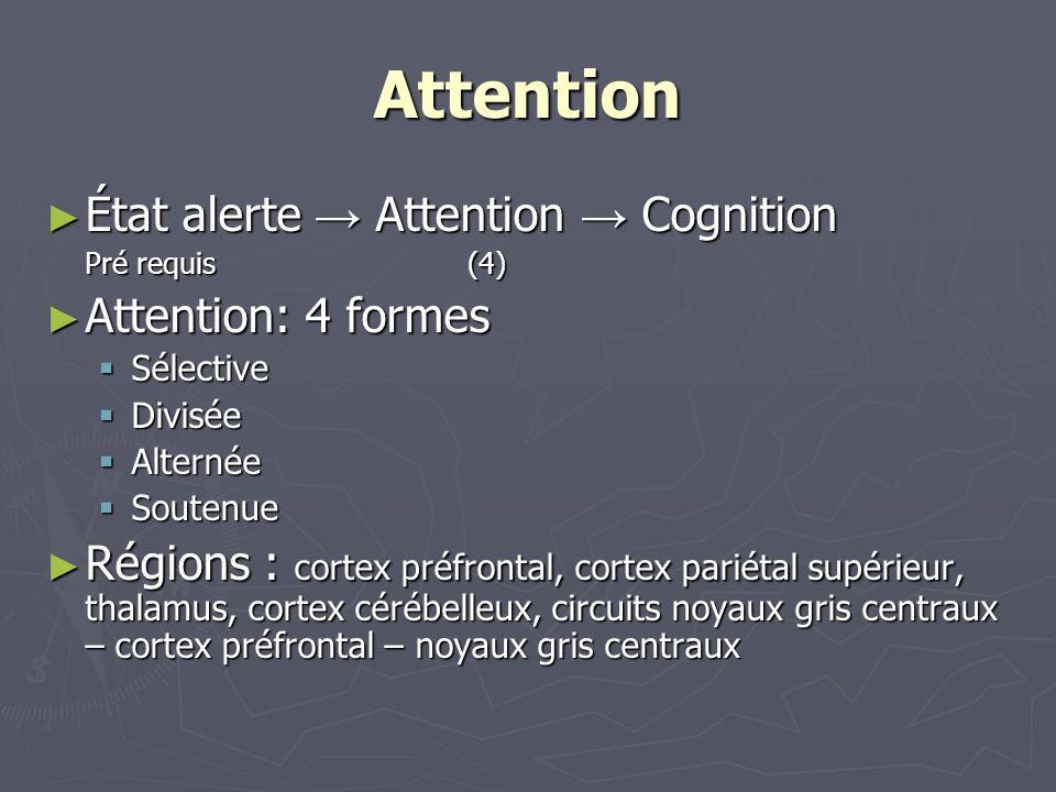 Attention État alerte Attention Cognition État alerte Attention Cognition Pré requis(4) Attention: 4 formes Attention: 4 formes Sélective Sélective Di