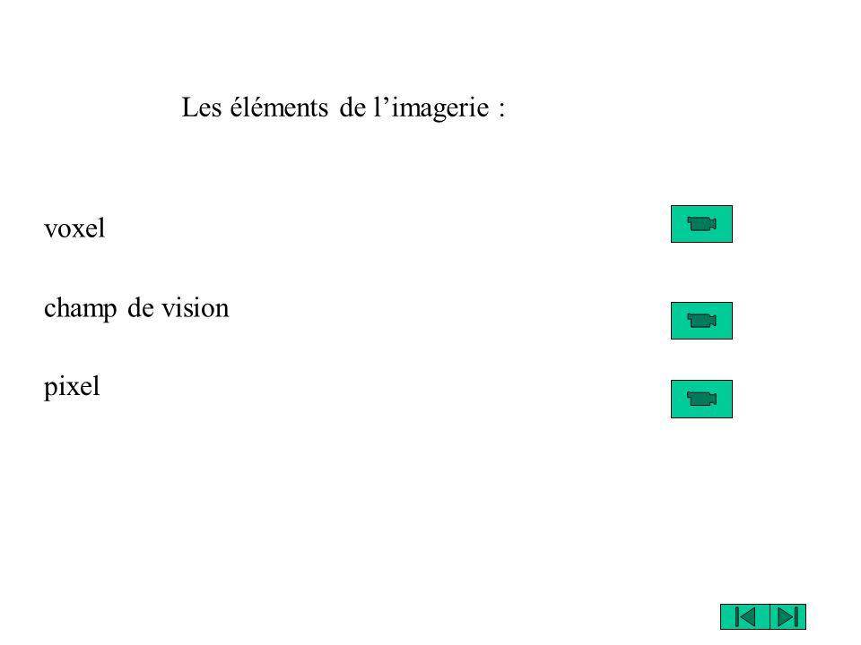 voxel pixel champ de vision Les éléments de limagerie :