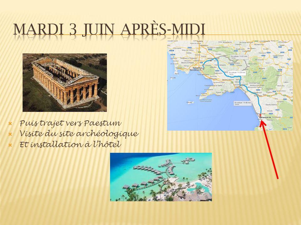 Puis trajet vers Paestum Visite du site archéologique Et installation à lhôtel