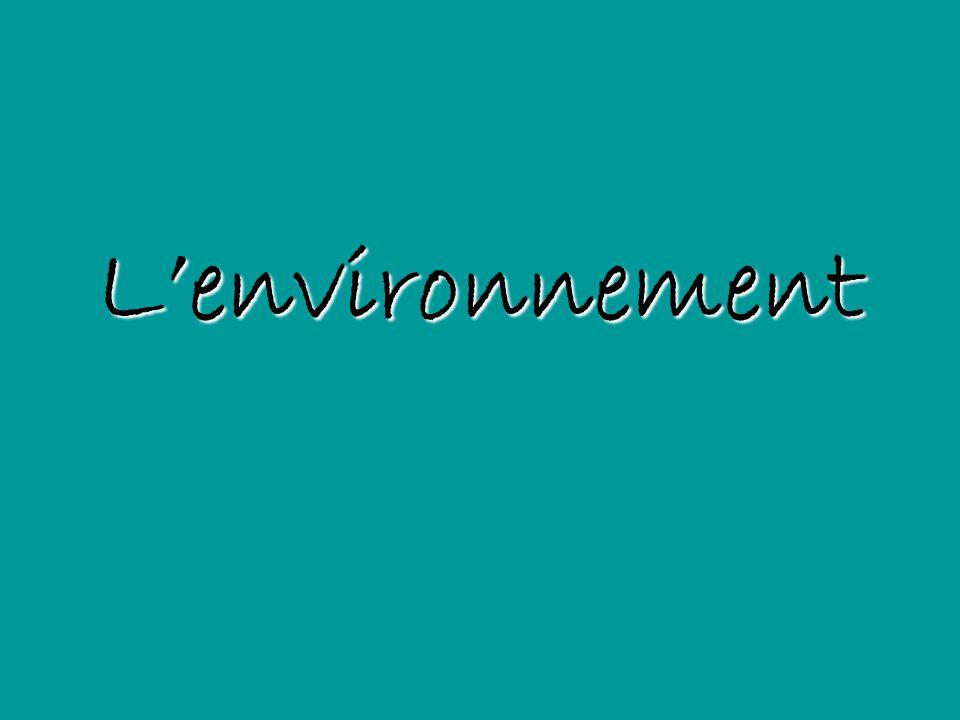 Lenvironnement