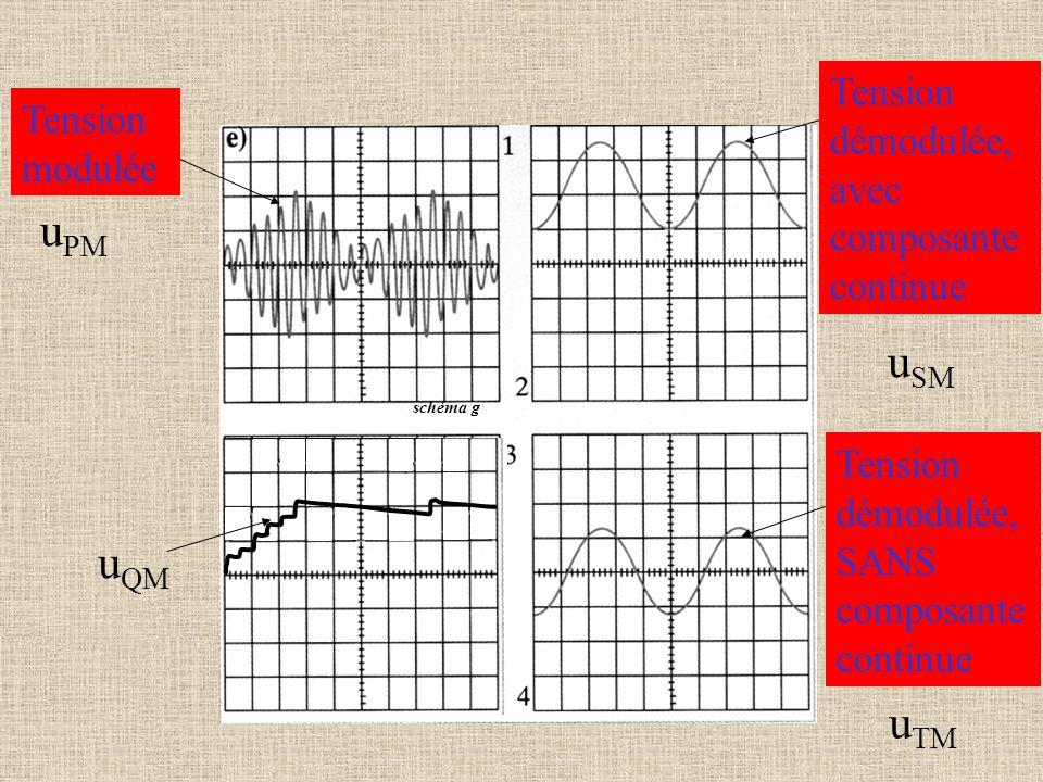 schéma g Tension modulée u PM Tension démodulée, avec composante continue u SM Tension démodulée, SANS composante continue u TM u QM