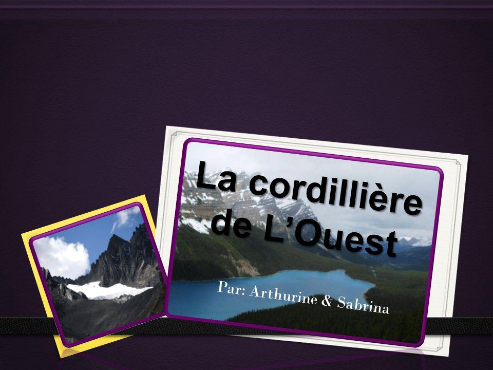 La localisation 0 La Cordillère de LOuest est située au long de côte louest du Canada.