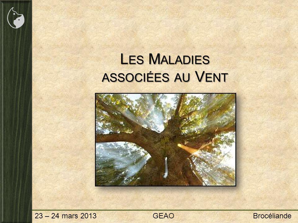 23 – 24 mars 2013 GEAO Brocéliande L ES M ALADIES ASSOCIÉES AU V ENT