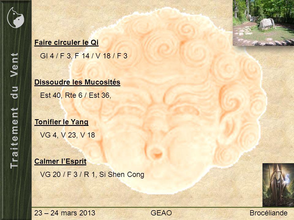 23 – 24 mars 2013 GEAO Brocéliande Faire circuler le Qi GI 4 / F 3, F 14 / V 18 / F 3 Dissoudre les Mucosités Est 40, Rte 6 / Est 36, Tonifier le Yang