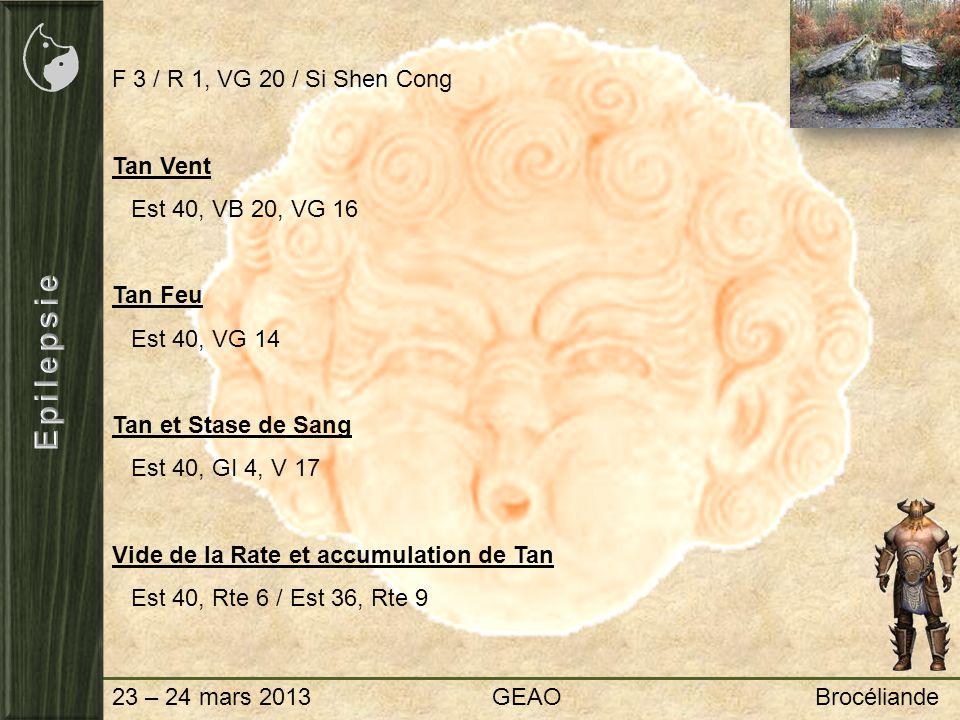 23 – 24 mars 2013 GEAO Brocéliande F 3 / R 1, VG 20 / Si Shen Cong Tan Vent Est 40, VB 20, VG 16 Tan Feu Est 40, VG 14 Tan et Stase de Sang Est 40, GI