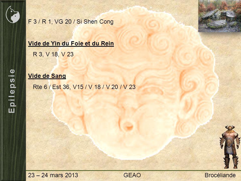 23 – 24 mars 2013 GEAO Brocéliande F 3 / R 1, VG 20 / Si Shen Cong Vide de Yin du Foie et du Rein R 3, V 18, V 23 Vide de Sang Rte 6 / Est 36, V15 / V