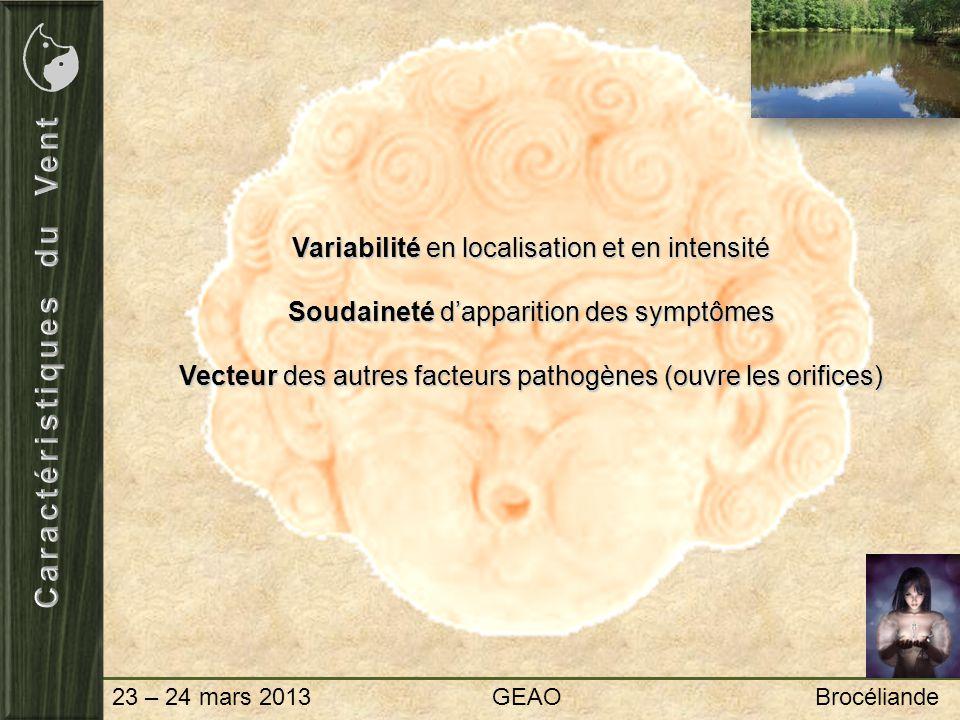 23 – 24 mars 2013 GEAO Brocéliande Médecine OccidentaleMédecine Chinoise Dermatologie Neurologie Cardiologie Chaleur Vent Tan