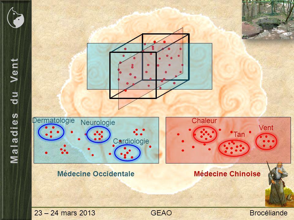 23 – 24 mars 2013 GEAO Brocéliande Attaques externes Pénétration par la peau, les muscles ou les articulations 6 couches (Vent Froid), 4 couches (Vent Chaleur), 3 Réchauffeurs (Vent Chaleur Humidité) Affections musculaires Spasmes, myoclonies, tremblements, paralysie Syndrome Bi Rhumatisme articulaire intermittent, qui change darticulation Souvent associé au Froid et à lHumidité