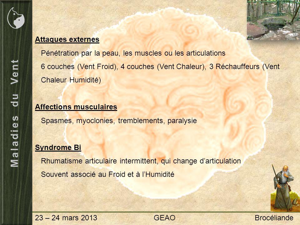 23 – 24 mars 2013 GEAO Brocéliande Attaques externes Pénétration par la peau, les muscles ou les articulations 6 couches (Vent Froid), 4 couches (Vent