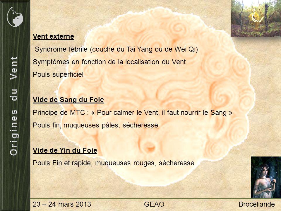 23 – 24 mars 2013 GEAO Brocéliande Vent externe Syndrome fébrile (couche du Tai Yang ou de Wei Qi) Symptômes en fonction de la localisation du Vent Po