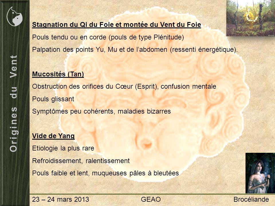 23 – 24 mars 2013 GEAO Brocéliande Stagnation du Qi du Foie et montée du Vent du Foie Pouls tendu ou en corde (pouls de type Plénitude) Palpation des