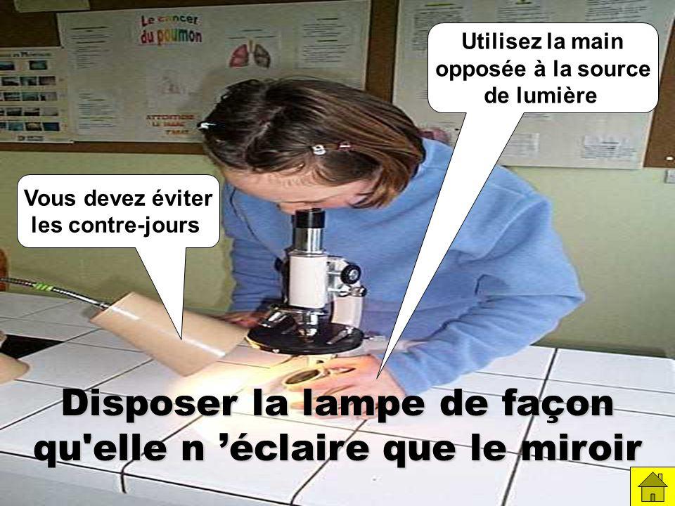 Disposer la lampe de façon qu elle n éclaire que le miroir Vous devez éviter les contre-jours Utilisez la main opposée à la source de lumière