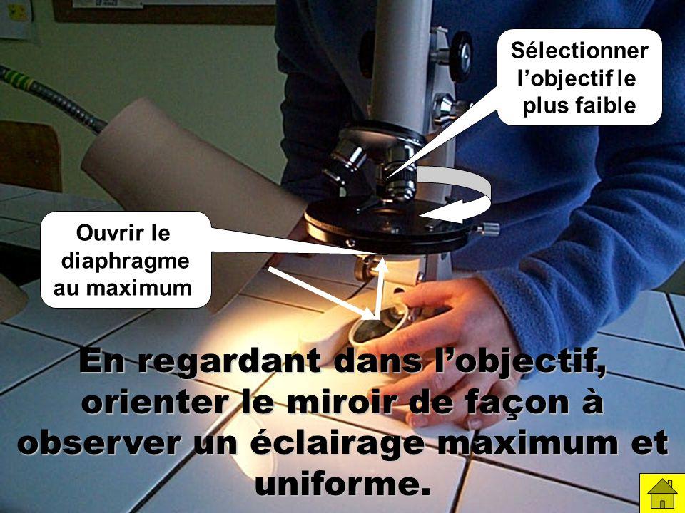 En regardant dans lobjectif, orienter le miroir de façon à observer un éclairage maximum et uniforme.