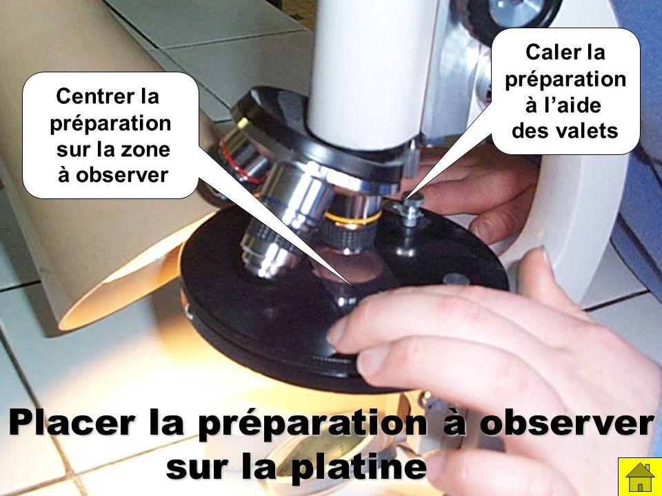 Placer la préparation à observer sur la platine Centrer la préparation sur la zone à observer Caler la préparation à laide des valets