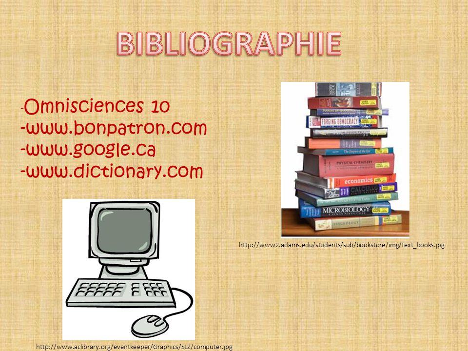 - Omnisciences 10 -www.bonpatron.com -www.google.ca -www.dictionary.com http://www.aclibrary.org/eventkeeper/Graphics/SLZ/computer.jpg http://www2.ada