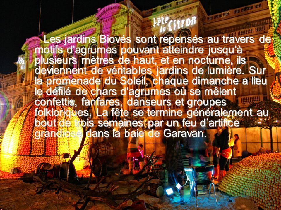 Les jardins Biovés sont repensés au travers de motifs d agrumes pouvant atteindre jusqu à plusieurs mètres de haut, et en nocturne, ils deviennent de véritables jardins de lumière.