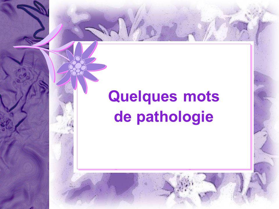 A. Gougerot – Dermatologue – 08/09 Quelques mots de pathologie Quelques mots de pathologie