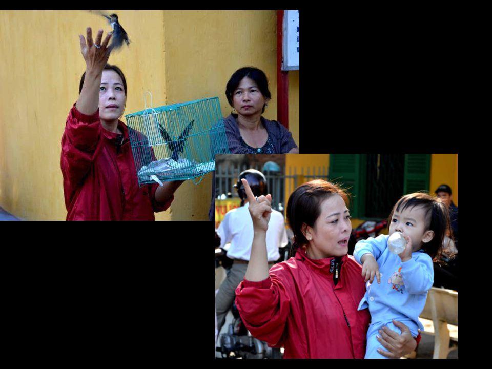 Quand des « oiseaux en cage, à libérer moyennant quelques piastres, permettent à une grand-mère de survivre