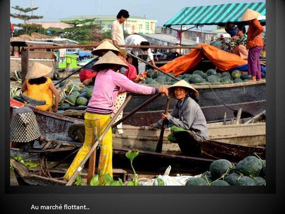 Vers le Mékong, ses fermes et marchés flottants…