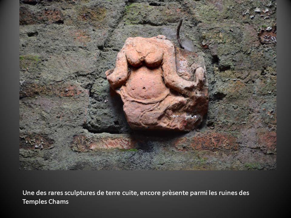 Une des rares sculptures de terre cuite, encore prèsente parmi les ruines des Temples Chams