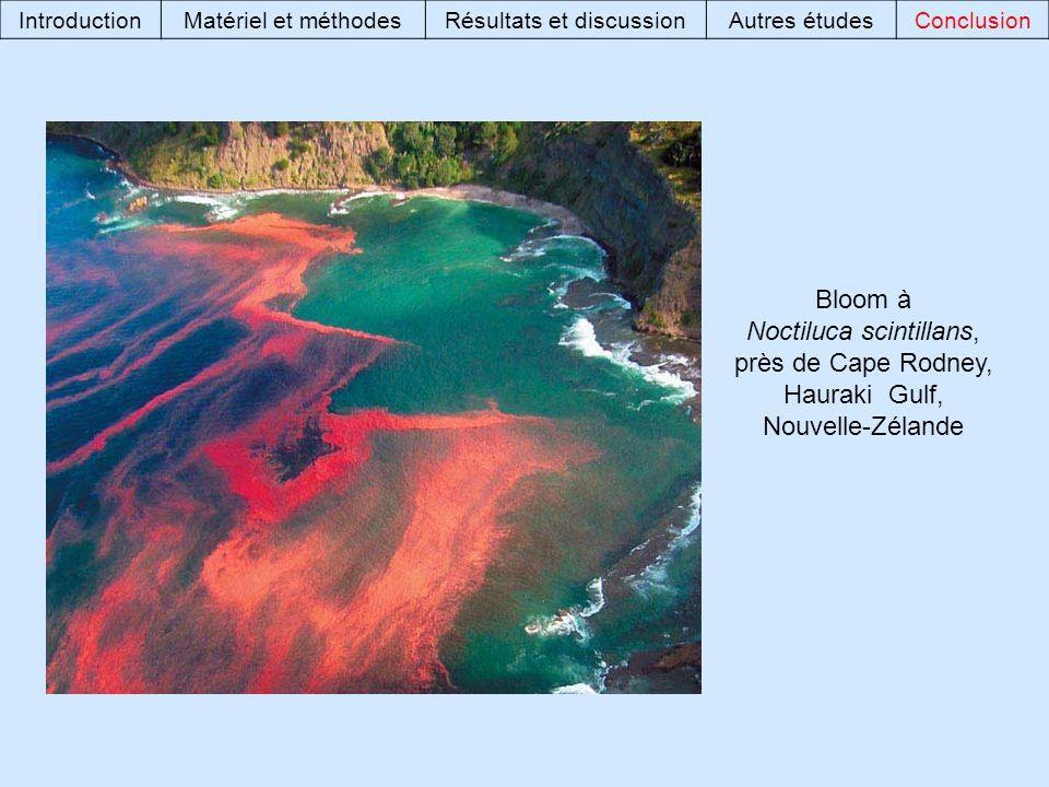 Bloom à Noctiluca scintillans, près de Cape Rodney, Hauraki Gulf, Nouvelle-Zélande IntroductionMatériel et méthodesRésultats et discussionAutres étudesConclusion