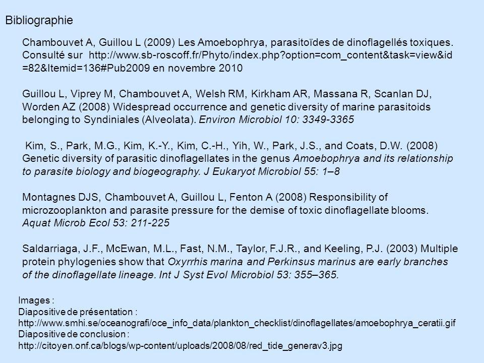 Bibliographie Chambouvet A, Guillou L (2009) Les Amoebophrya, parasitoïdes de dinoflagellés toxiques.