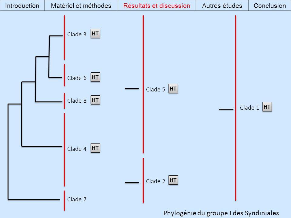 Phylogénie du groupe I des Syndiniales Clade 7 Clade 4 Clade 8 Clade 6 Clade 3 Clade 1 Clade 2 Clade 5 HT IntroductionMatériel et méthodesRésultats et discussionAutres étudesConclusion