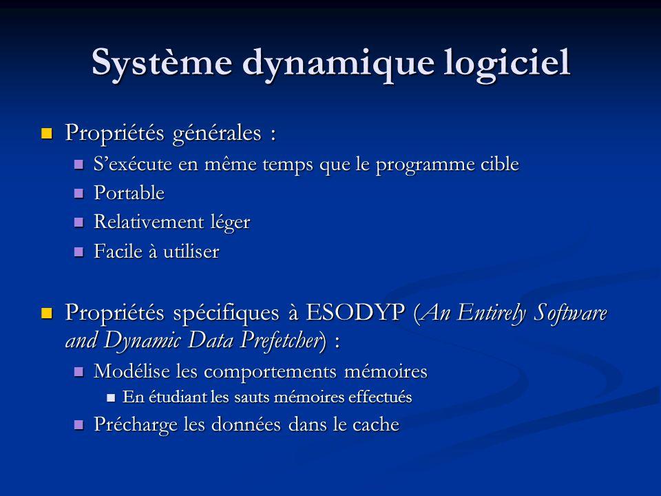 Système dynamique logiciel Propriétés générales : Propriétés générales : Sexécute en même temps que le programme cible Sexécute en même temps que le p