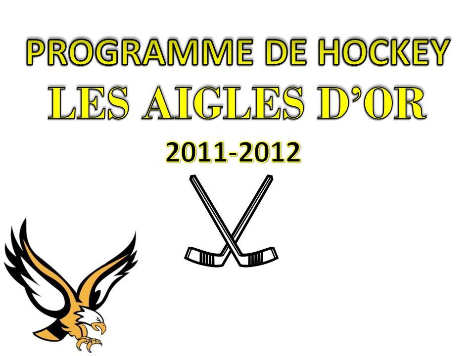 Un minimum de 12 parties dans la ligue de hockey sans contact du Sport étudiant du Lac St-Louis (RSÉQ).