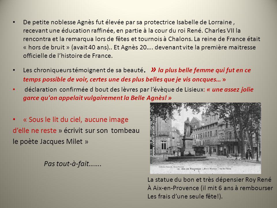 De petite noblesse Agnès fut élevée par sa protectrice Isabelle de Lorraine, recevant une éducation raffinée, en partie à la cour du roi René.