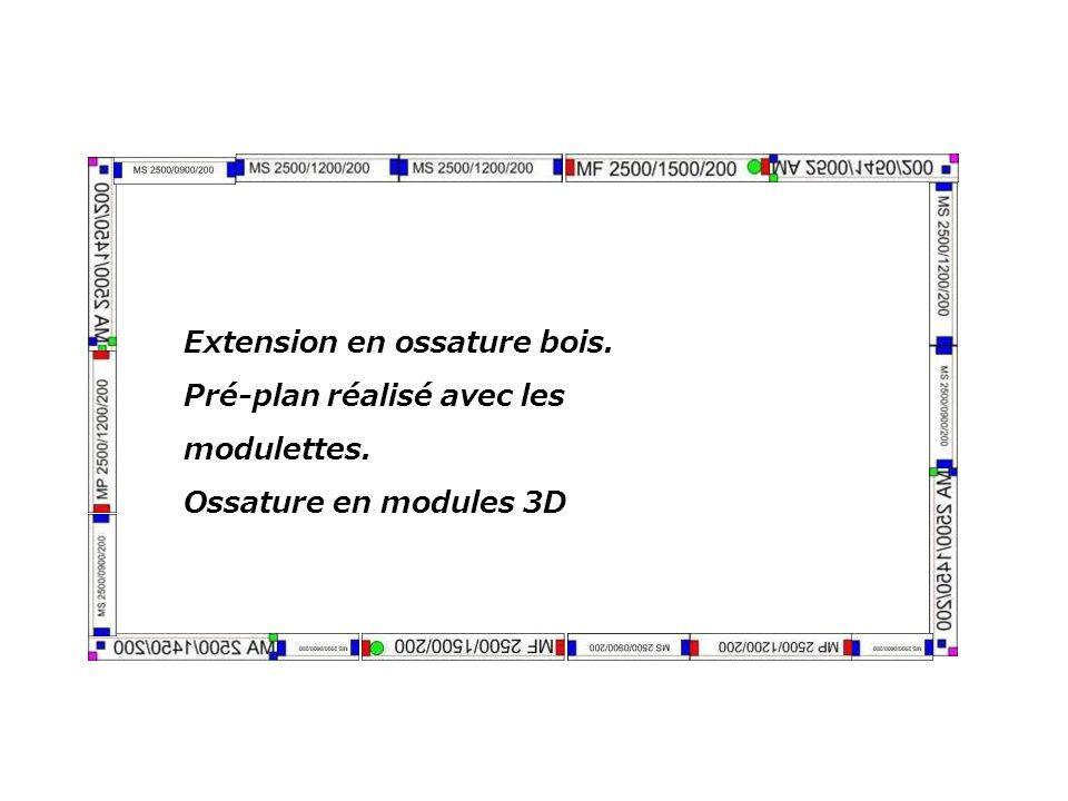 Extension en ossature bois. Pré-plan réalisé avec les modulettes. Ossature en modules 3D