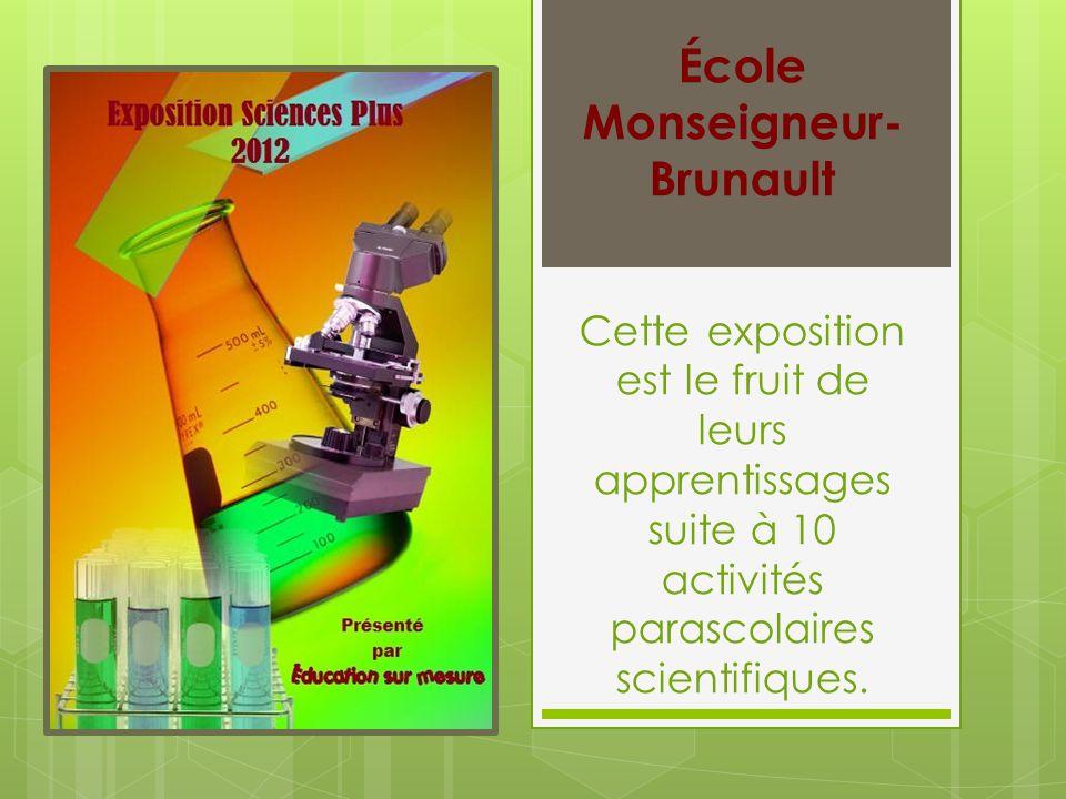 Cette exposition est le fruit de leurs apprentissages suite à 10 activités parascolaires scientifiques.