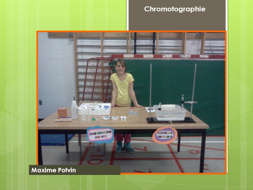 Chromotographie Maxime Potvin