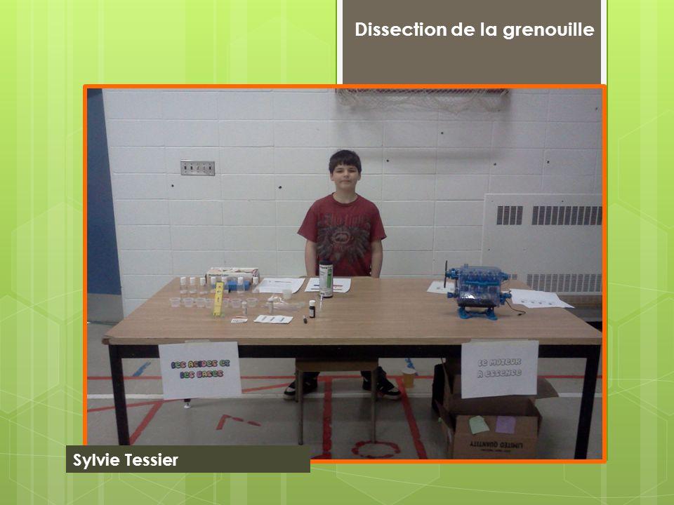 Dissection de la grenouille Sylvie Tessier