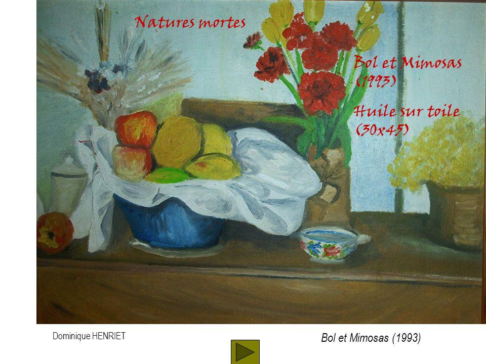 Dominique HENRIET Natures mortes Bol et Mimosas (1993) Huile sur toile (30x45) Bol et Mimosas (1993)
