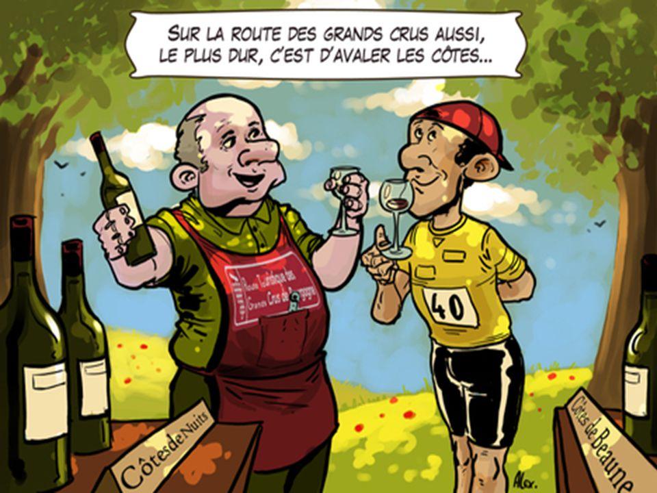 La route des grand crus des Vins de Bourgogne Labus dalcool est dangereux il faut le boire avec modération mais ce Diaporama à regarder sans modératio