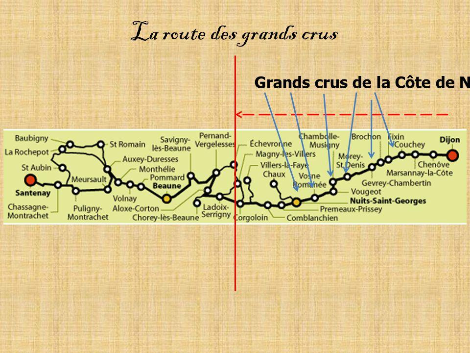 Grands crus de la Côte de Nuit La route des grands crus