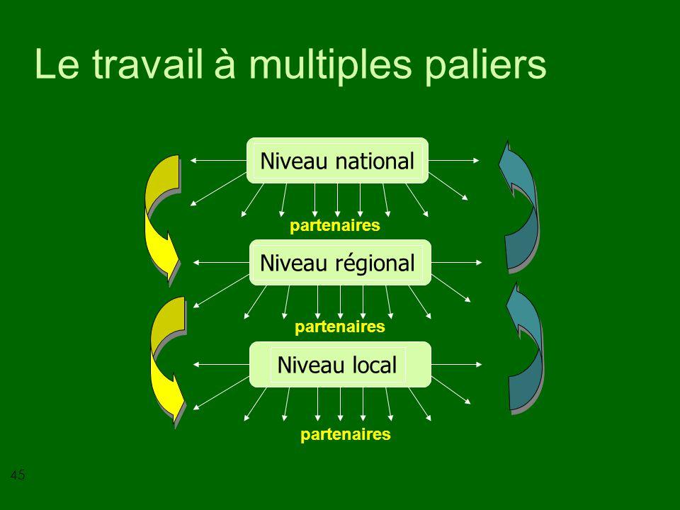 45 Le travail à multiples paliers Niveau nationalNiveau régionalNiveau local partenaires