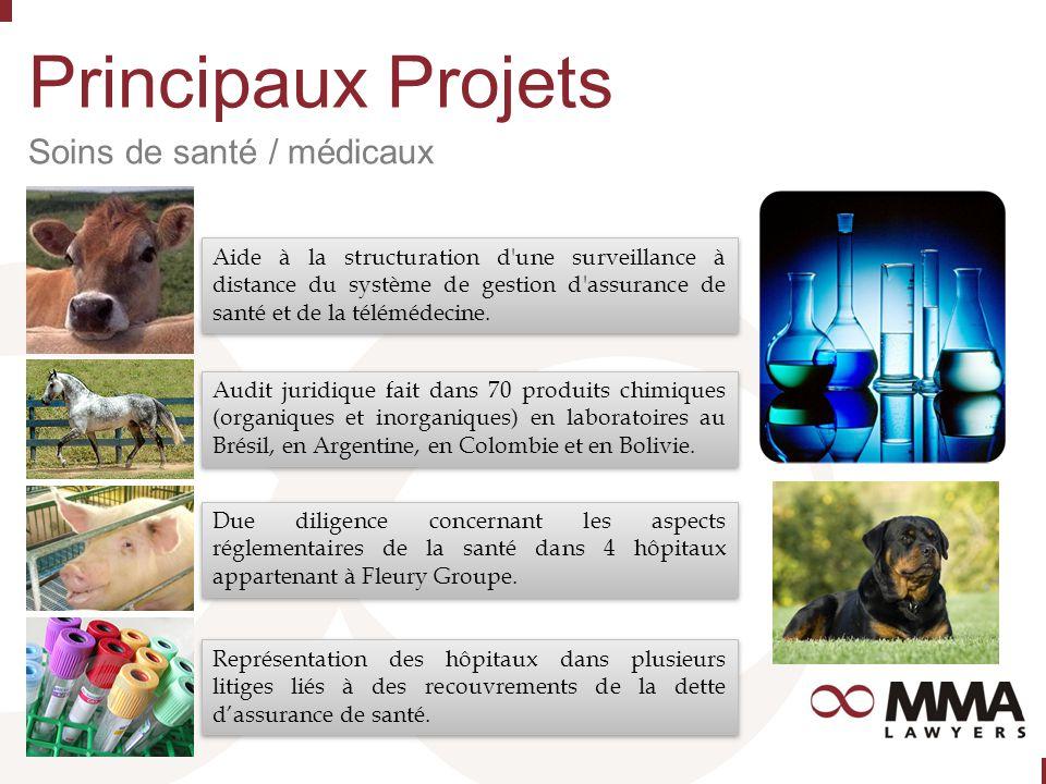 Principaux Projets Soins de santé / médicaux Aide à la structuration d une surveillance à distance du système de gestion d assurance de santé et de la télémédecine.