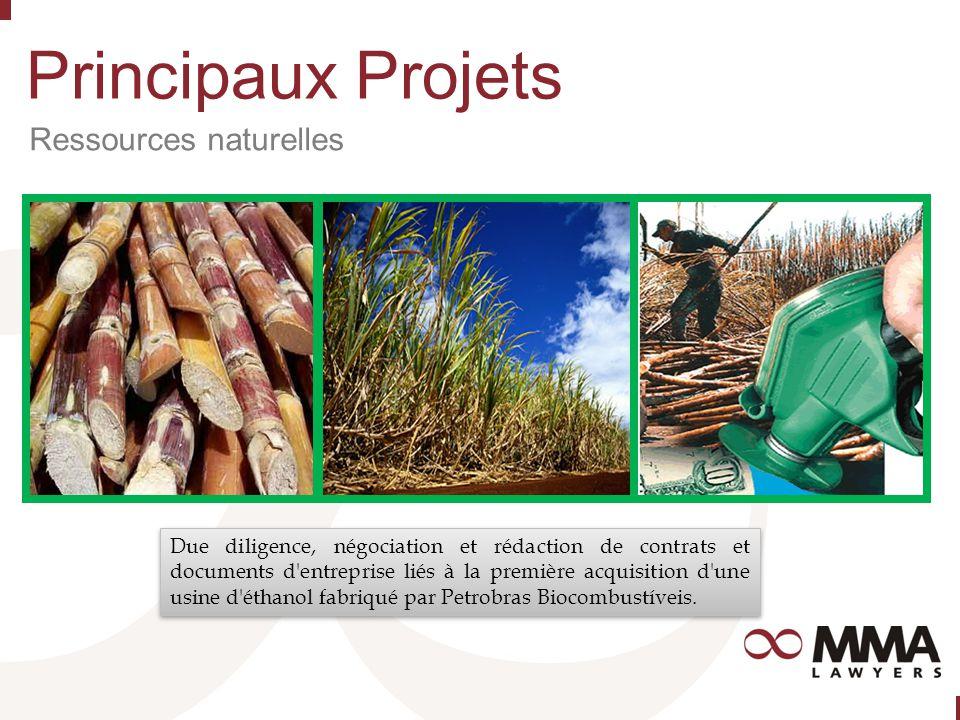 Principaux Projets Ressources naturelles Due diligence, négociation et rédaction de contrats et documents d entreprise liés à la première acquisition d une usine d éthanol fabriqué par Petrobras Biocombustíveis.
