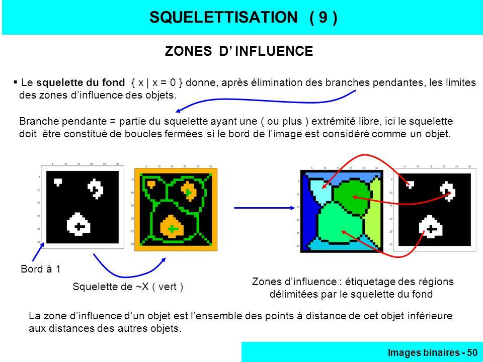 Images binaires - 50 SQUELETTISATION ( 9 ) ZONES D INFLUENCE Le squelette du fond { x | x = 0 } donne, après élimination des branches pendantes, les limites des zones dinfluence des objets.
